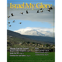Vol. 69.6 - Nov/Dec 2011 - Thank God For Israel