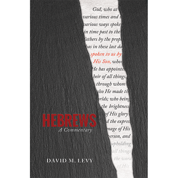 Hebrews eBook - EPUB